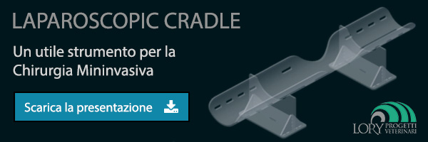 Laparoscopic Cradle